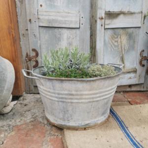Galvanized metal water Bucket. Planter with handles. Garden decor.